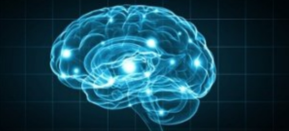 Concept of human intelligence with human brain on blue background-224655-edited.jpeg